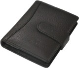 eXcorio 24 Card Holder (Set of 1, Brown)