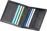 ALV 10 Card Holder (Set of 1, Black)