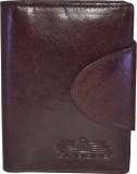 Arpera 20 Card Holder (Set of 1, Brown)
