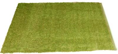 Ritika Carpets Green Plastic Area Rug