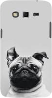 Fuson Back Cover for SAMSUNG Galaxy Grand 2, Samsung Galaxy Grand 2 G7105, Samsung Galaxy Grand 2 G7102, Samsung Galaxy Grand Ii(Puppy Pug Dog)