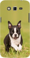 Fuson Back Cover for SAMSUNG Galaxy Grand 2, Samsung Galaxy Grand 2 G7105, Samsung Galaxy Grand 2 G7102, Samsung Galaxy Grand Ii(Cute Little Puppy Dog