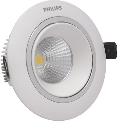 Phillips Flush Mount Ceiling Lamp
