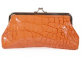 Silk Route Women Orange  Clutch