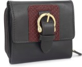 Hidesign Women Brown  Clutch