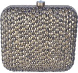 Posh Women Party Multicolor  Clutch