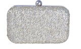 Posh Women Party Silver  Clutch