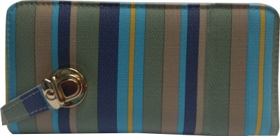 NEHASTORE Multicolor  Clutch
