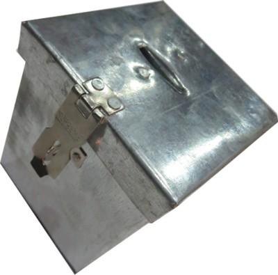 DCS Coin Collecting Box ( Hundi) Coin Bank