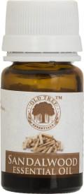 Old Tree Sandalwood Essential Oil(15 ml)