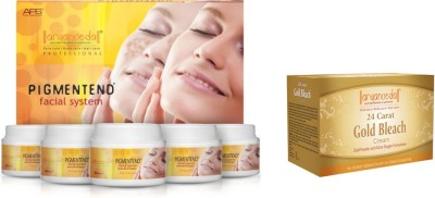 Aryanveda Pigmented Facial System (510gm) With One Gold Bleach (250gm)