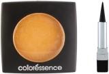 Coloressence Makeup Kit -15 (Set of 2)