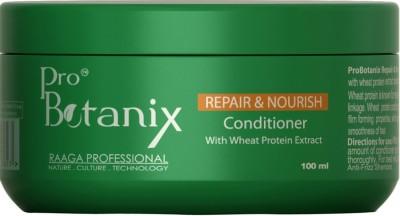 Raaga Professional ProBotanix Repair & Nourish