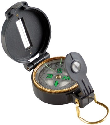Neo Gold Leaf Magnetic 1 Compass