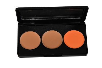Star's Cosmetics Pallate (Meduim,Dark,Orange) Concealer(Multicolor)