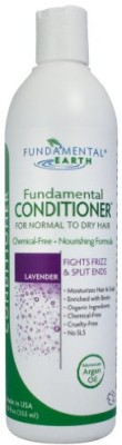 Fundamental Earth Conditioner Normal to Dry Hair Fights Frizz and Split Ends With Argan Oil