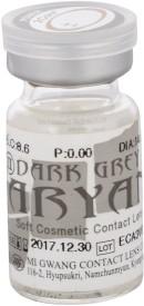 Aryan 2 Tone Grey Yearly Contact Lens