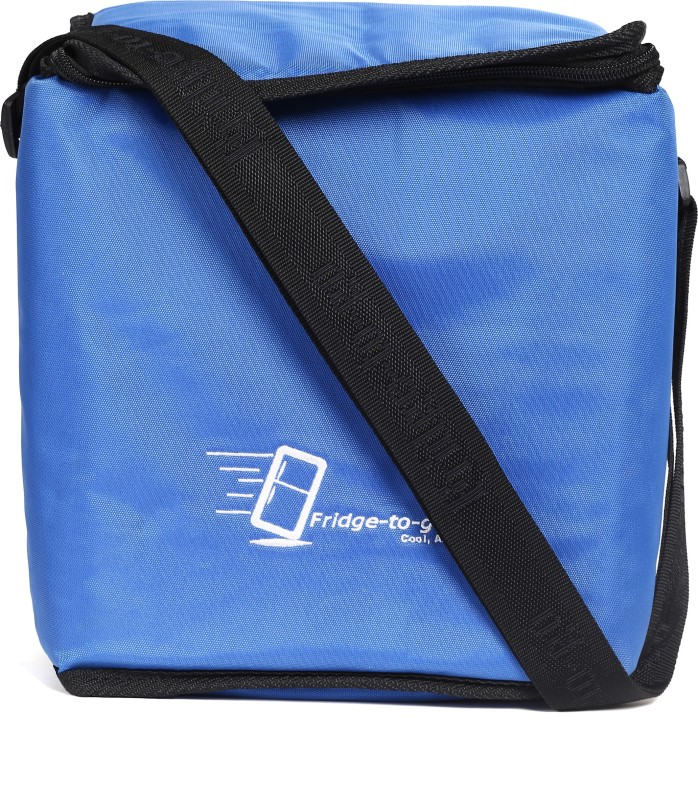 Fridge To Go Nylon, Polyester Cooler Bag(Blue Collapsible)