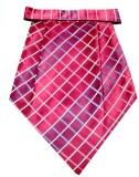 The Vatican Cravat (Pack of 1)