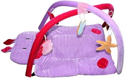 Kidzvilla Baby Play Gym(Purple)