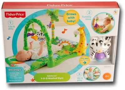 Fisher-Price Open top gym(Green)