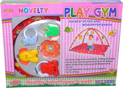 Novelty Play Gym