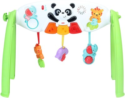 Fisher-Price Grow with Me Gym