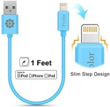 Fcolor 3215181 Lightning Cable (Blue)