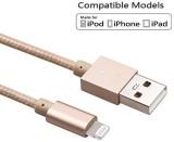 Pashion PA5132 Lightning Cable (Grey)