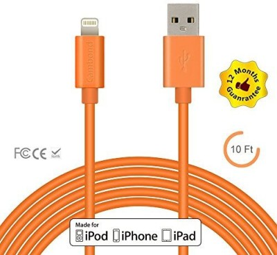Izapp 3216371 Lightning Cable
