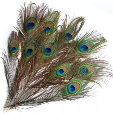 Jetlink Pack of 20 Decorative Feathers(40-50 cm Peacock Feather)