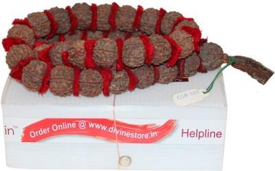 Divine Store 5 Mukhi Rudraksha Mala Deity Ornament