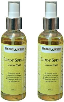 Herbal Roots Citrus Rush Body Spray  -  For Men, Women