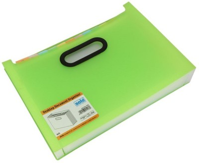 Solo 12 Compartments Polypropylene Plastic Desktop Expanding Document Organiser