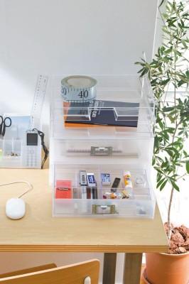 Howards 2 Compartments Plastic Tray Oraganizer