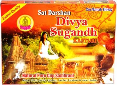 Sat Darshan Divya Sugnadh Kasturi Sambrani Dhoop Cone