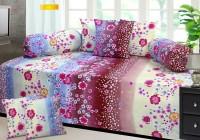 Aroma Comfort Polycotton Floral Diwan Set