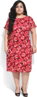 Amydus Women's Shift Red Dress