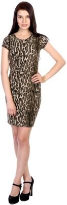 James Scot Women's Bandage Brown Dress