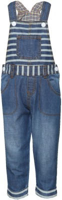 Tales & Stories Boy's Blue Dungaree