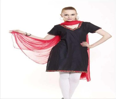 Aaanimation Pure Chiffon Embroidered Women's Dupatta