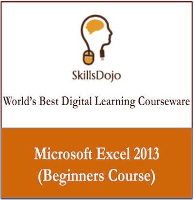 SkillsDojo Microsoft Excel 2013 (Beginners Course) Online Course(Voucher)