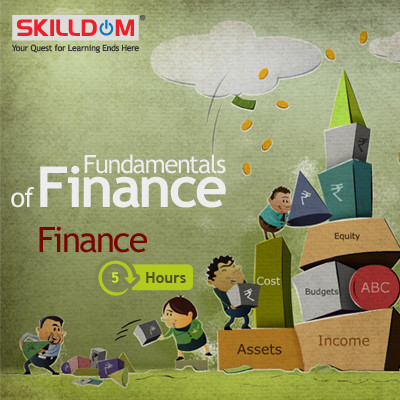 SKILLDOM Fundamentals of Finance : Finance Certification Course(User ID-Password)