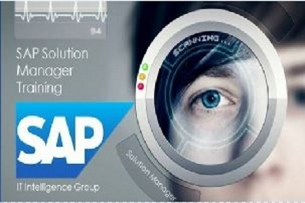 EasySkillz SAP Solution Manager Training : IT Intelligence Group Online Course(Voucher)