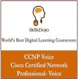 SkillsDojo CCNP - Cisco Certified Networ...