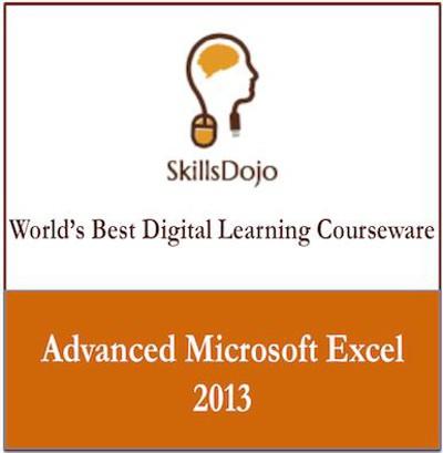 SkillsDojo Advanced Microsoft Excel 2013 Online Course(Voucher)