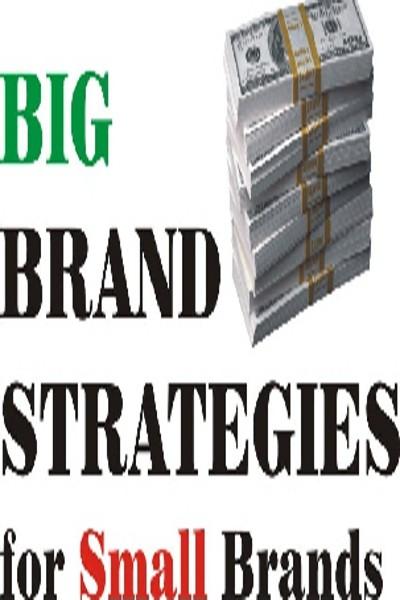 EasySkillz Big Brand Strategies for Small Brands Online Course(Voucher)