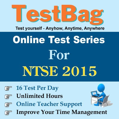 TestBag NTSE 2015 Online Test(Voucher)