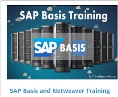 EasySkillz SAP Basis and Netweaver Training Online Course(Voucher)
