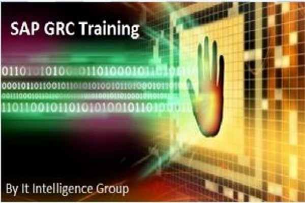 EasySkillz SAP GRC Training by IT Intelligence Group Online Course(Voucher)